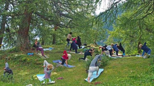 Yoga under larches