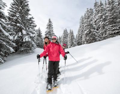 Snowshoe track  - Gryon