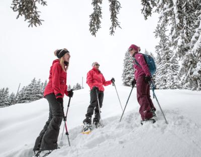 Schneeschuwanderweg Les Mazots