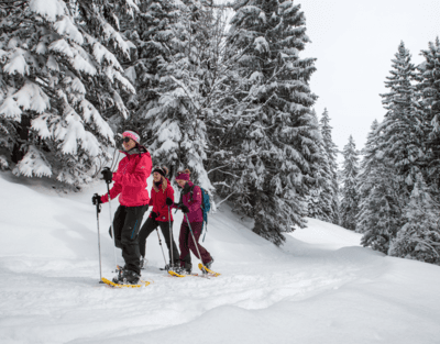 Snowshoeing -The lakes circuit